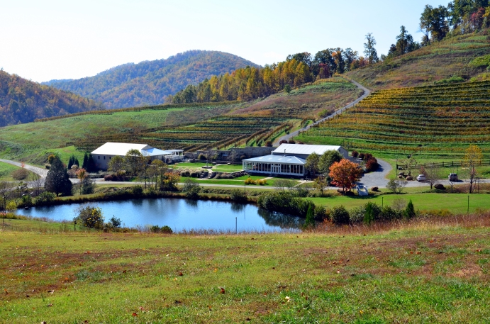 The lake and terraced vineyard at DelFosse (photo: rcnormanphoto.com)