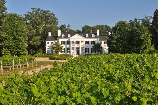 Keswick Vineyards (photo: tripadvisor.com)