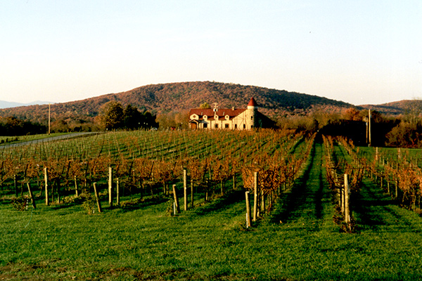 Horton Vineyards (photo: hardwickmountain.org)